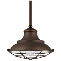 Signature 1 Light 11 inch Burnished Bronze Mini-Pendant Ceiling Light