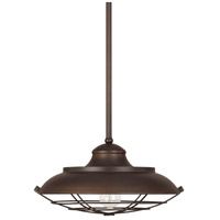 Signature 1 Light 17 inch Burnished Bronze Pendant Ceiling Light