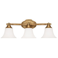 Blakely 3 Light 24 inch Antique Gold Vanity Wall Light in Soft White