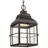 Lanier LED 11 inch Old Bronze Outdoor Hanging Lantern in Seeded