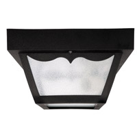 Signature 1 Light 8 inch Black Outdoor Ceiling