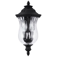 Capital Lighting 939821BK Ashford 2 Light 15 inch Black Outdoor Wall Lantern