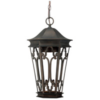 Capital Lighting Townsende 1 Light Outdoor Hanging Lantern in Old Bronze 9446OB