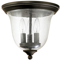 Signature 3 Light 11 inch Old Bronze Outdoor Ceiling