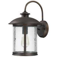 Capital Lighting Dylan 1 Light Outdoor Wall Lantern in Old Bronze 9562OB
