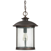 Capital Lighting Dylan 1 Light Outdoor Hanging Lantern in Old Bronze 9564OB