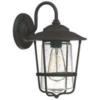 Capital Lighting Creekside 1 Light Outdoor Wall Lantern in Black with Clear Seeded Glass 9601BK
