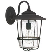 Capital Lighting Creekside 1 Light Outdoor Wall Lantern in Black with Clear Seeded Glass 9602BK