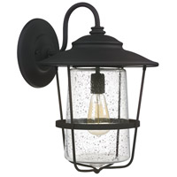 Capital Lighting Creekside 1 Light Outdoor Wall Lantern in Black with Clear Seeded Glass 9603BK