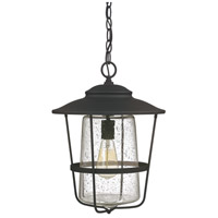 Capital Lighting Creekside 1 Light Outdoor Hanging Lantern in Black with Clear Seeded Glass 9604BK