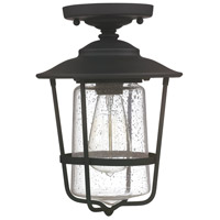 Creekside 1 Light 8 inch Black Outdoor Semi-Flush in Clear