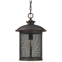Dylan 1 Light 12 inch Old Bronze Outdoor Hanging Lantern