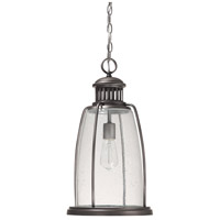 Harbour 1 Light 11 inch Graphite Outdoor Hanging Lantern
