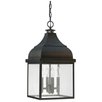 Capital Lighting Signature 4 Light Outdoor Hanging Lantern in Old Bronze 9646OB