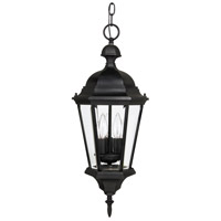 Capital Lighting Carraige House 3 Light Outdoor Hanging Lantern in Black 9724BK