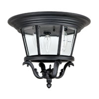 Capital Lighting Madison 3 Light Outdoor Ceiling in Black with Clear Glass 9758BK photo thumbnail
