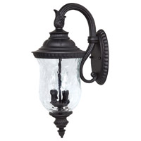 Capital Lighting Ashford 2 Light Outdoor Wall Lantern in Black with Hammered Glass 9782BK