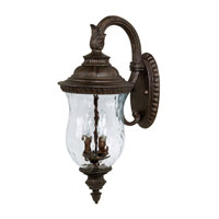 Capital Lighting Ashford 2 Light Outdoor Wall Lantern in Tortoise with Hammered Glass 9782TS