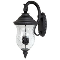 Capital Lighting Ashford 4 Light Outdoor Wall Lantern in Black with Hammered Glass 9784BK