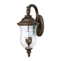 Capital Lighting Ashford 4 Light Outdoor Wall Lantern in Tortoise with Hammered Glass 9784TS