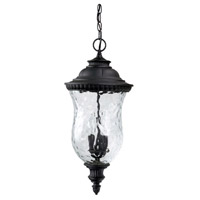 Capital Lighting Ashford 3 Light Outdoor Hanging Lantern in Black with Hammered Glass 9786BK