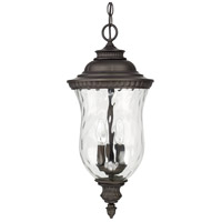 Ashford 3 Light 10 inch Old Bronze Outdoor Hanging Lantern