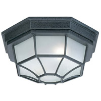 Capital Lighting 9800BK Signature 2 Light 11 inch Black Outdoor Ceiling