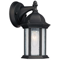 Capital Lighting Main Street 1 Light Outdoor Wall Lantern in Black with Seeded Glass 9831BK