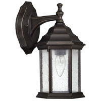Main Street 1 Light 13 inch Old Bronze Outdoor Wall Lantern