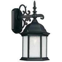 Capital Lighting Main Street 1 Light Outdoor Wall Lantern in Black with Seeded Glass 9833BK