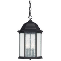 Capital Lighting Main Street 3 Light Outdoor Hanging Lantern in Black with Seeded Glass 9836BK