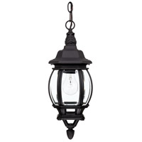 Capital Lighting French Country 1 Light Outdoor Hanging Lantern in Black with Clear Glass 9868BK