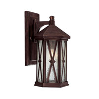 Capital Lighting Saxton 1 Light Outdoor Wall Lantern in Burnished Bronze with Seeded Glass 9872BB photo thumbnail