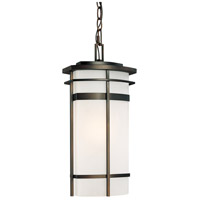 Capital Lighting Lakeshore 1 Light Outdoor Hanging Lantern in Old Bronze with Seeded Glass 9885OB