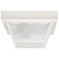 Signature 2 Light 10 inch White Outdoor Ceiling