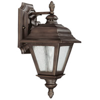 Capital Lighting Brookwood 1 Light Outdoor Wall Lantern in Burnished Bronze with Seeded Glass 9961BB