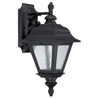 Capital Lighting Brookwood 1 Light Outdoor Wall Lantern in Black with Seeded Glass 9961BK