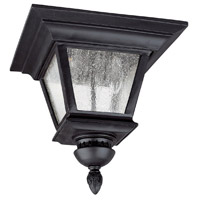 Capital Lighting Brookwood 3 Light Outdoor Ceiling in Black with Seeded Glass 9968BK
