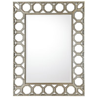 Signature 49 X 37 inch Silver and Gold Undertones Wall Mirror Home Decor