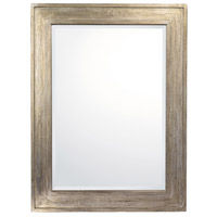 Capital Lighting M402401 Signature 40 X 30 inch Wood Wall Mirror