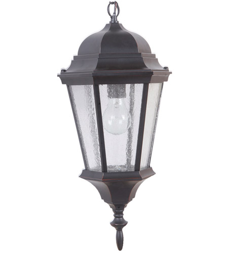 Chadwick 1 Light 9 Inch Oiled Bronze Gilded Outdoor Pendant Medium