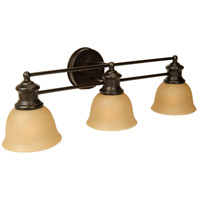 Light Rail 3 Light 26 inch Oiled Bronze Vanity Light Wall Light in Tea-Stained Glass