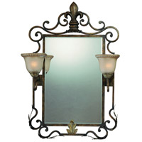 Devereaux 38 X 26 inch Burleson Bronze Mirror Light Home Decor in Distressed Mocha Etched Glass