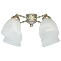 Spot Light 4 Light Brushed Nickel Light Kit