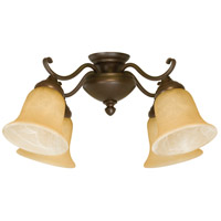 Craftmade Spot Light 4 Light Light Kit in Aged Bronze LK405CFL-AG
