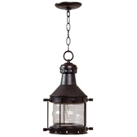 Craftmade Z111-BC Nautical 1 Light 9 inch Burnished Copper Outdoor Pendant, Large