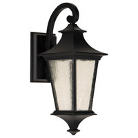 Argent II LED 16 inch Midnight Outdoor Wall Lantern, Small