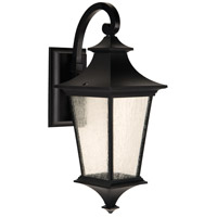 Craftmade Z1364-MN-LED Argent Ii LED 21 inch Midnight Outdoor Wall Lantern, Medium