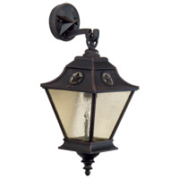 Chaparral 1 Light 20 inch Rust Outdoor Wall Mount in Champagne Seeded