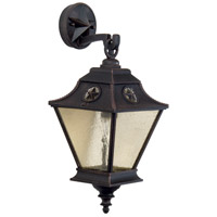 Craftmade Z1404-RT Chaparral 1 Light 20 inch Rust Outdoor Wall Lantern, Medium